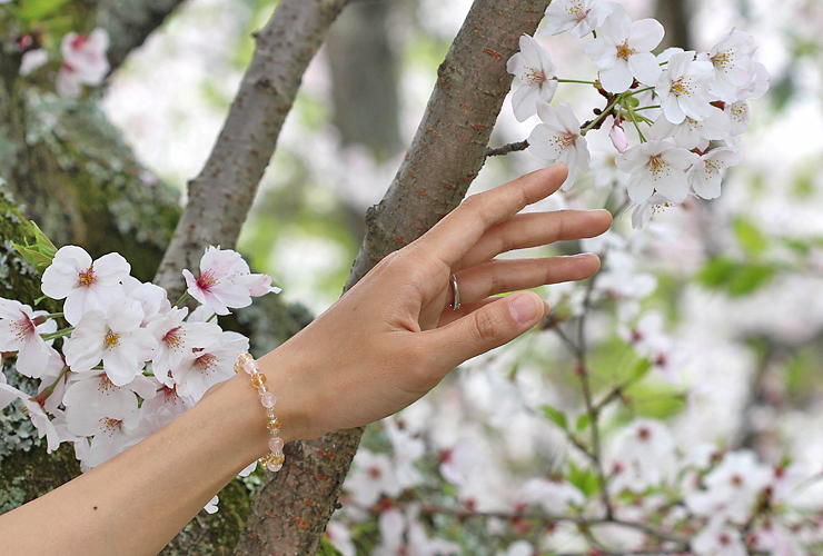 「心の目覚め」ローズクォーツ・シトリンブレスレット(相合い~相生6ミリ~)の風景着用イメージ