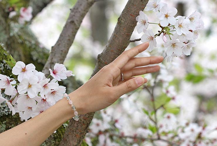 「花の冠」ローズクォーツ・グリーンフローライトブレスレット(相合い~相生6ミリ~)の風景着用イメージ