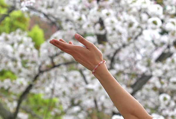「女神の愛」ローズクォーツ・インカローズブレスレット(相合い~相生6ミリ~)のメインフラワーイメージ