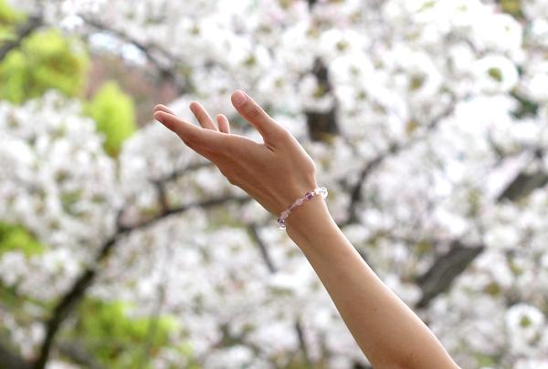 「再生の友」ローズクォーツ・ラベンダーアメジストブレスレット(相合い~相生6ミリ~)のメインフラワーイメージ