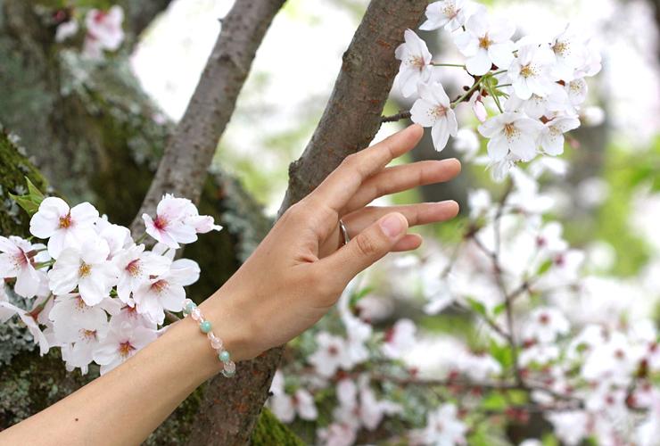 「私の成長」ローズクォーツ・翡翠ブレスレット(相合い~相生6ミリ~)の風景着用イメージ