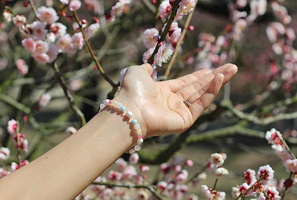 「春告草」高品質クイーンコンクシェルブレスレット(御あつらえ~クイーンコンクシェル~)のイメージ画像2