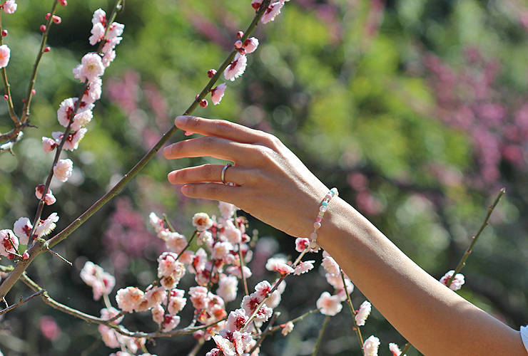 「春告草」高品質クイーンコンクシェルブレスレット(御あつらえ~クイーンコンクシェル~)のイメージ画像6