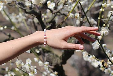 「春告草」高品質クイーンコンクシェルブレスレット(御あつらえ~クイーンコンクシェル~)のイメージ画像7