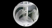 玄武 彫り水晶(10mm)