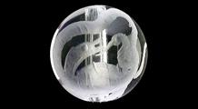 玄武 彫り水晶(8mm)